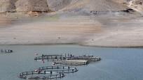 Sarımehmet Barajı'nda endişelendiren görüntü! 10 metreye kadar düştü