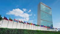 BM 7 ülkenin oy hakkını askıya aldı