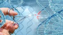 Yaşlanmayı geciktirebilecek gen tedavisi geliştirildi