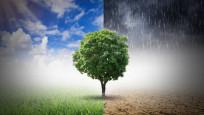 İklim krizi: Beş temel soru, beş basit yanıt!
