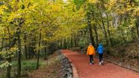 Sonbaharın tadını çıkarmak için: İstanbul'un ormanları