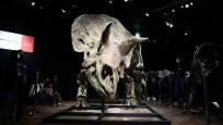 Dünyanın en büyük dinozor fosili Paris'te rekor fiyata satıldı