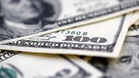 Rusya'nın döviz rezervleri bir haftada 5 milyar dolar arttı
