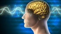 İnsan beyni 3 bin yıl öncesine göre küçüldü