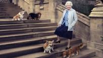 Kraliçe II. Elizabeth'e hediye edilen iki sevimli dost