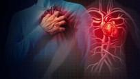 Damarları tıkayıp kalbi vuran 8 önemli tehlike!