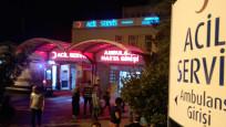 Zonguldak'ta arının soktuğu kişi hayatını kaybetti