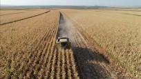 Tarımda üretici fiyatları yüzde 21.77 arttı