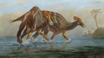 Meksika'da 72 milyon yıl önce yaşayan dinozor türü keşfedildi
