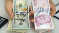 IIF'den Türk Lirası beklentileri