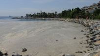 Darıca ve Şarköy'de denize girmeyin uyarısı