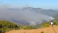 Mersin'deki orman yangınına havadan müdahale yeniden başladı