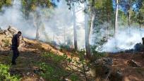 Adana'da 3 noktada orman yangını