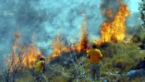 Türkiye'nin 'ciğerleri' yanıyor: 7 ilde orman yangını
