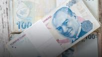 'Temmuz ayının şampiyonu Türk Lirası'
