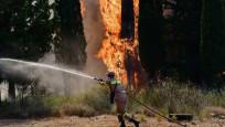 Yunanistan bir günde 48 yangın çıktı