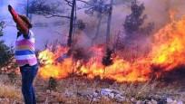 Muğla'da bir orman yangını daha çıktı