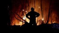 Akdeniz alev aldı: Yunanistan ve İtalya'da orman yangınları sürüyor