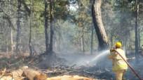Osmaniye'de orman yangını!