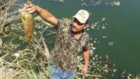 Büyük Menderes'te balık ölümleri! Nedeni ortaya çıktı