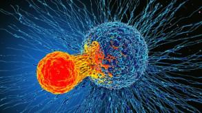 Dünyayı heyecanlandıran keşif! Tüm kanserleri tedavi edebilir