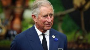 Prens Charles torununu sildi