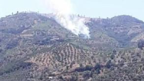 Bir kahreden haber daha! İzmir'de orman yangını...