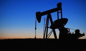 Brent petrolün varili 45,02 dolar
