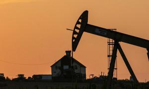 Petrol fiyatları teşvik ve büyüme beklentisiyle yükseldi
