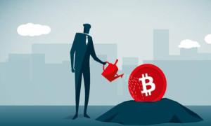Bireysel yatırımcı Bitcoin'de riskten nasıl kaçınmalı