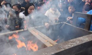 Çin domuz yılına girdi
