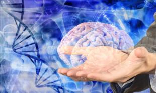 Vücudun en gizemli organı: Beyin