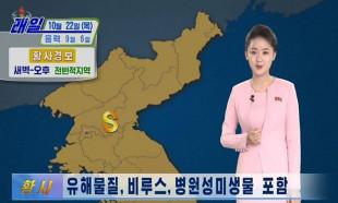 Kuzey Kore'de halka Çin'den gelen sarı virüs tozu uyarısı