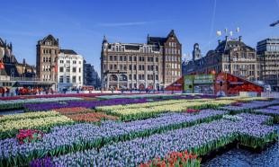 Amsterdam'dan Airbnb'ye yasak kararı