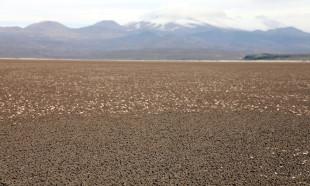 Çöl gölünün tamamı kurudu