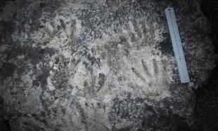 Dünyanın en eski sanat eseri bulundu: 226 bin yıllık