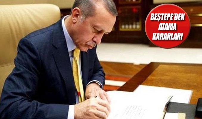 Ahmet Koca bakan yardımcısı, Yusuf Tekin rektör