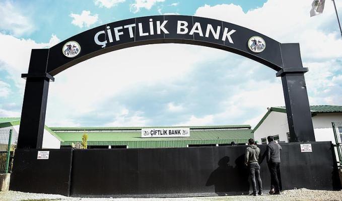 Çiftlikbank'ın sosyal medya sorumlusu yakalandı