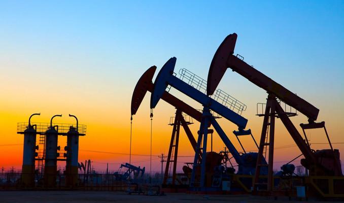 Petrol büyüme endişeleri ve stok artışları ile kaybını korudu