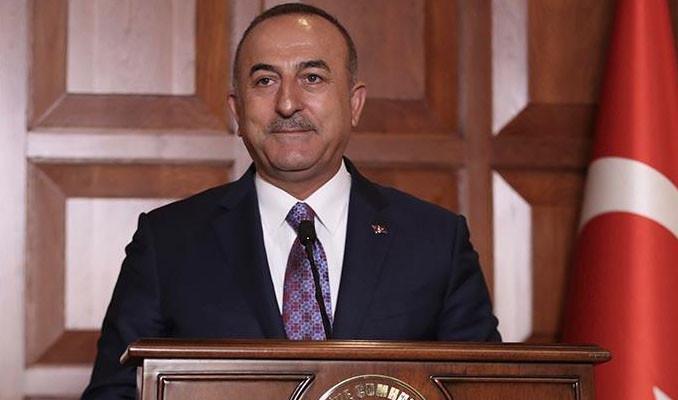 Çavuşoğlu şikayet etti, Avazyan gözaltına alındı