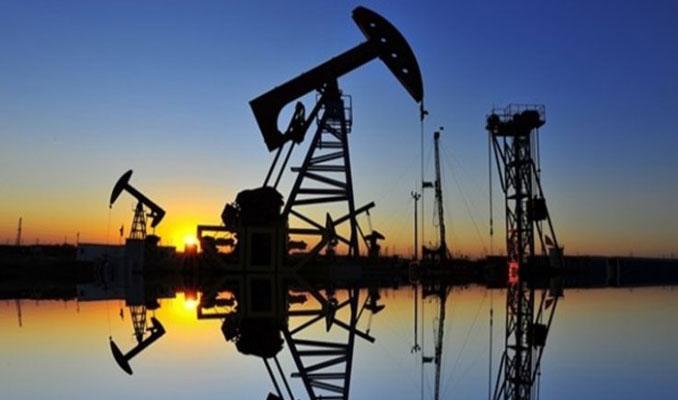 Petrol stoklardaki düşüş ile yükselişini sürdürdü