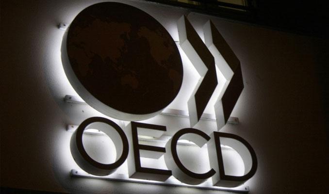 OECD'den çarpıcı Türkiye analizi