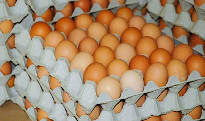 Yumurtanın kolisi 5 liraya kadar düştü