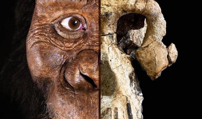 Bilim insanları ilk insanın neye benzediğini buldu