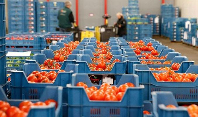 Türkiye'de organik ürün pazarı büyüyor