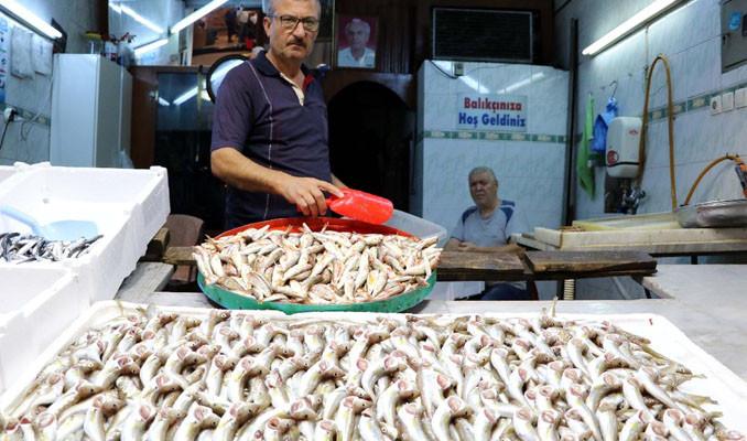Zonguldaklı balıkçılar sezona hayal kırıklığıyla başladı