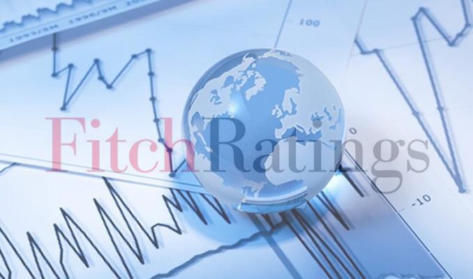 Fitch sigorta şirketine verdiği kredi notunu geri çekti