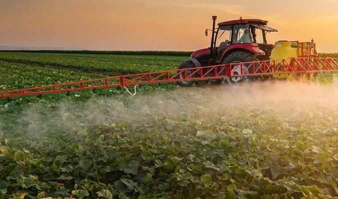 Türkiye'de bitkisel üretim arttı