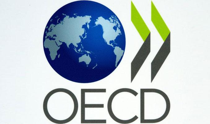 OECD ülkelerinin vergi gelirleri 2019'da düştü