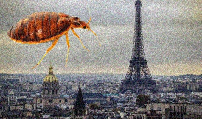Paris'i tahtakuruları sardı